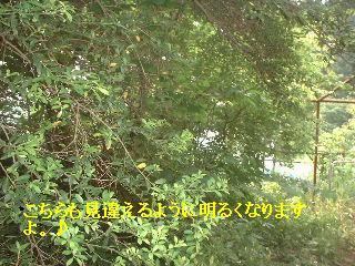 f0031037_18264594.jpg