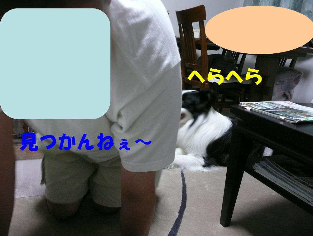 c0147241_1503950.jpg