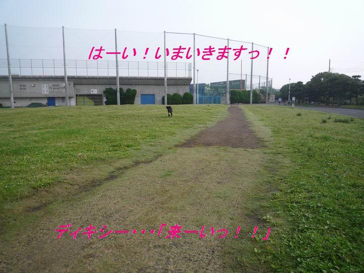 a0104464_1328056.jpg