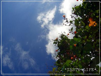 f0143407_15181121.jpg