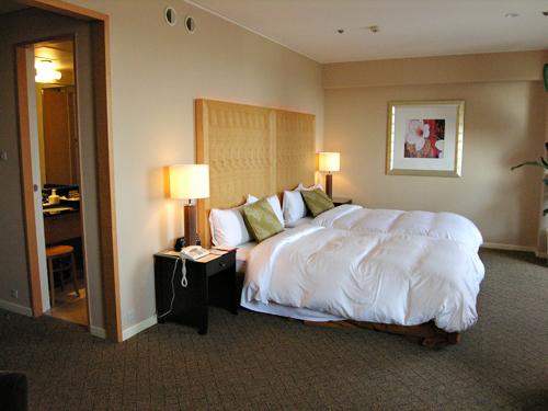 シェラトン都ホテル大阪_d0150915_23219.jpg