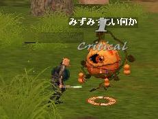 d0075339_7421384.jpg