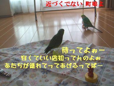 b0082757_10131926.jpg