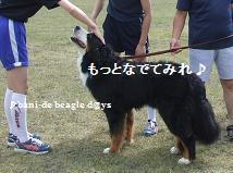 f0150377_16231057.jpg
