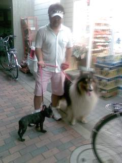 愛犬、金太郎参上♂_d0091909_16462692.jpg