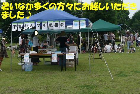 f0121712_13121054.jpg