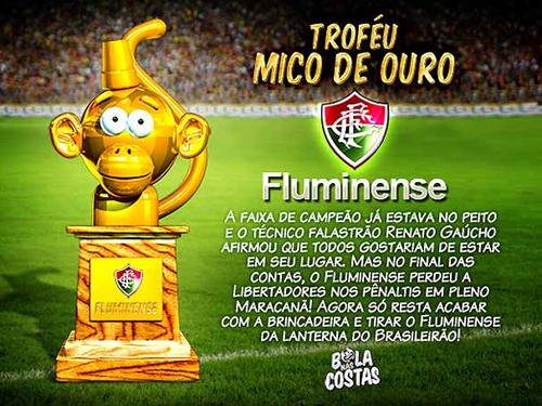 南米王者決定戦:Copa LIBERTADORES 2008に見たCariocaの姿。やっぱりFLAが嫌い。_b0032617_1702646.jpg