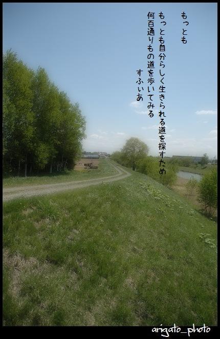 b0152416_0293168.jpg