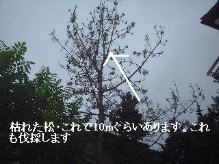 f0031037_19342370.jpg