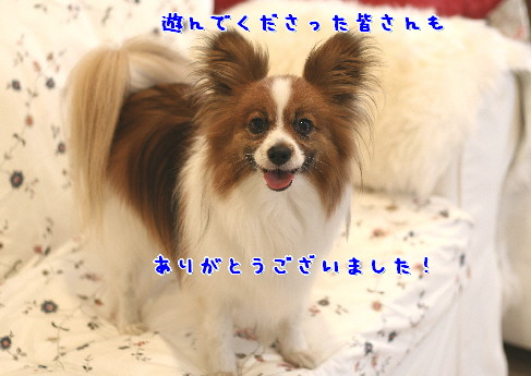d0013149_10245145.jpg