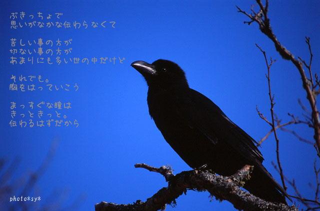 c0144353_17271126.jpg