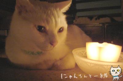 キャンドルナイト最終日_e0031853_19502878.jpg