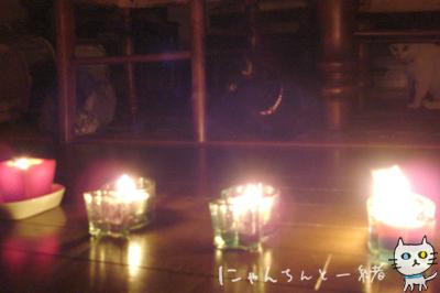 キャンドルナイト最終日_e0031853_19504519.jpg