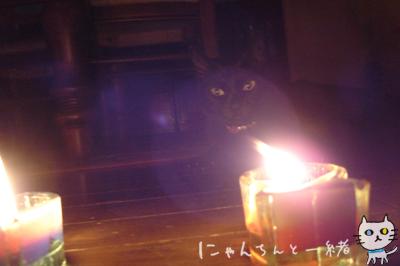 キャンドルナイト最終日_e0031853_19512741.jpg