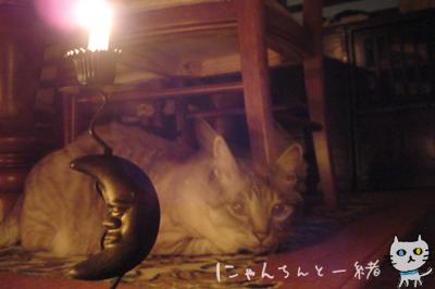 キャンドルナイト最終日_e0031853_19514582.jpg