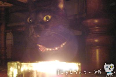 キャンドルナイト最終日_e0031853_1951719.jpg