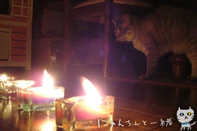 キャンドルナイト最終日_e0031853_1953215.jpg
