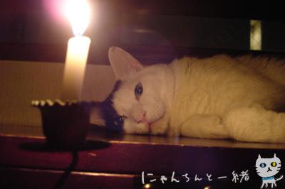 キャンドルナイト最終日_e0031853_195405.jpg
