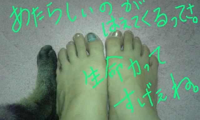b0122260_044488.jpg