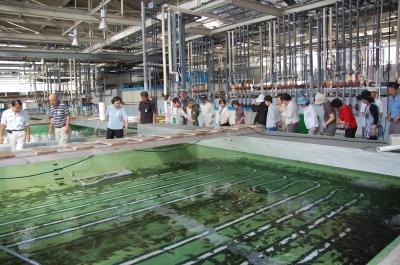 H20年7月度「大人の林間学校」:水産技術センター見学_c0108460_20163375.jpg