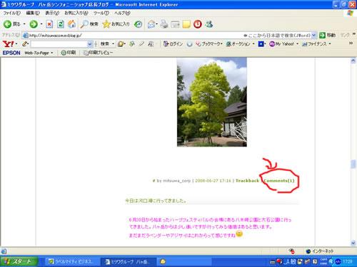 初心者用 ブログComments方法_d0133770_17552923.jpg