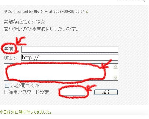 初心者用 ブログComments方法_d0133770_1804413.jpg
