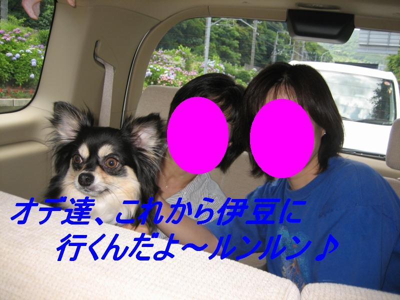 b0150088_23164590.jpg