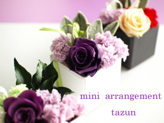 mini  arrangement_d0144095_933110.jpg