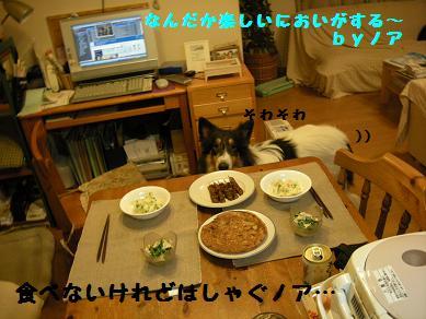 f0081100_168476.jpg