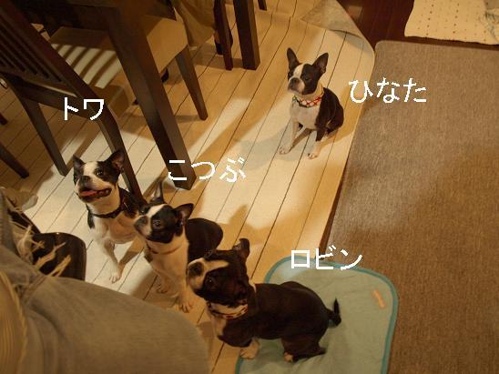 f0133316_20124510.jpg