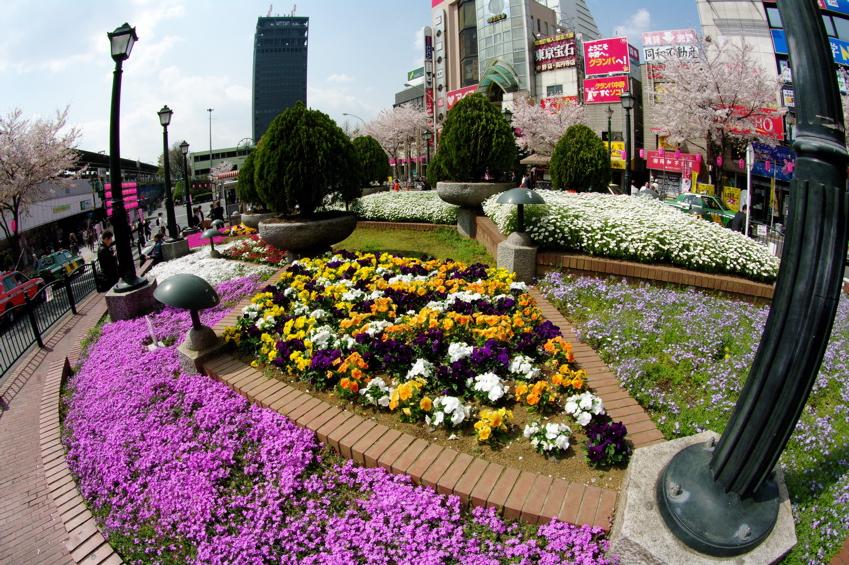 TOKYO CITY VOL4:中野_b0065730_20402699.jpg