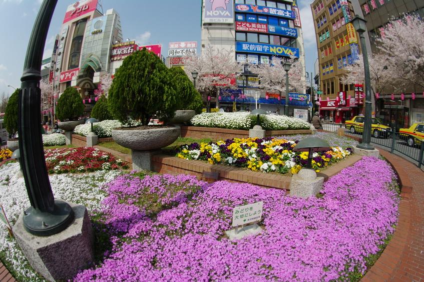 TOKYO CITY VOL4:中野_b0065730_20403963.jpg