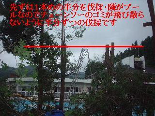 f0031037_2173646.jpg