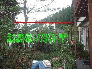 f0031037_2181635.jpg