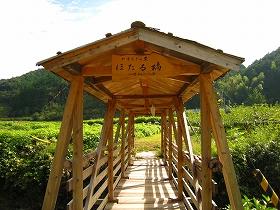 26・NPV活動フィールド/茂平の森Ⅱ/岡林山_f0000771_5511761.jpg