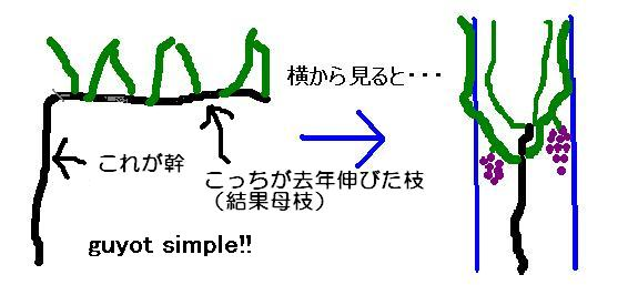 b0094717_001998.jpg