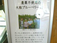 小渕沢道の駅のフローズンヨーグルト_f0019247_12514447.jpg