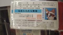 f0077051_191063.jpg
