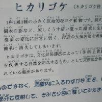 b0150110_20233035.jpg