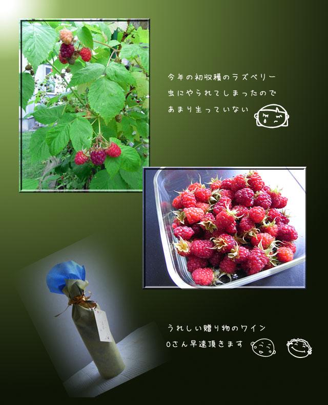 b0019313_18253929.jpg