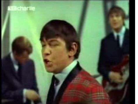 The Animals - Baby Let Me Take You Home / Gonna Send You Back To Walker