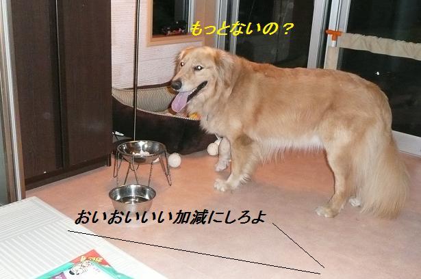 f0114128_2235971.jpg