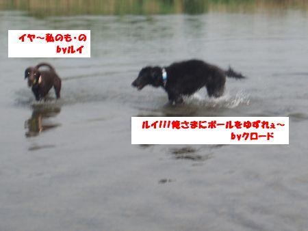 b0148945_16271327.jpg