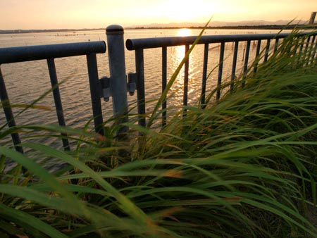 浜名湖 Part2_e0136764_22474675.jpg