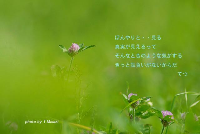 d0032782_0193887.jpg