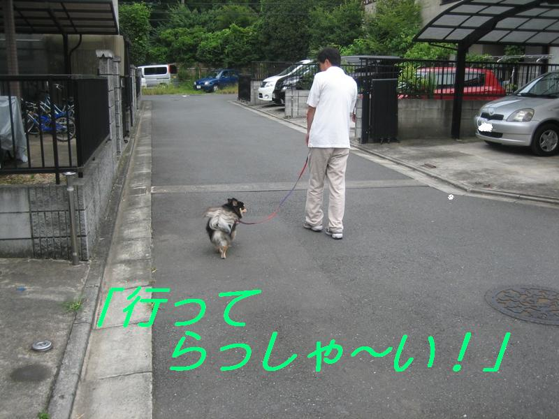 b0150088_17363551.jpg