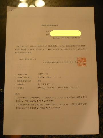 動物取扱業登録完了しました!!_b0130018_0593147.jpg