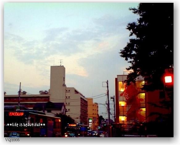 a walk at dusk_d0083623_20192956.jpg