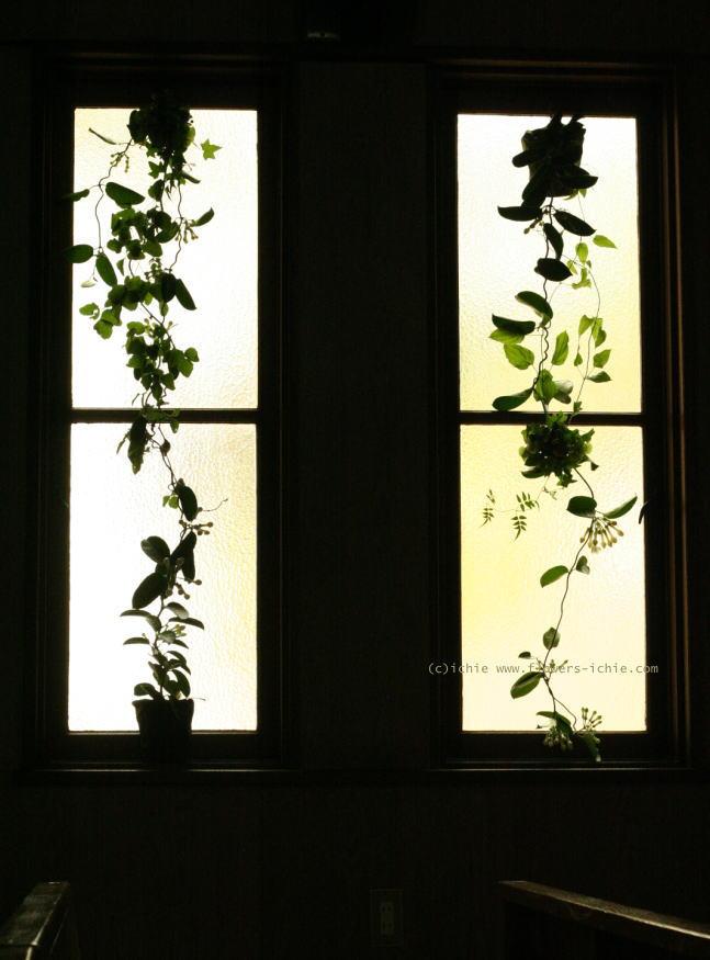 教会装花 ユリのバージンロード装花と窓 大森めぐみ教会_a0042928_22225832.jpg
