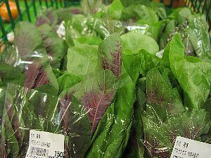 珍しい葉菜_c0141652_17261064.jpg
